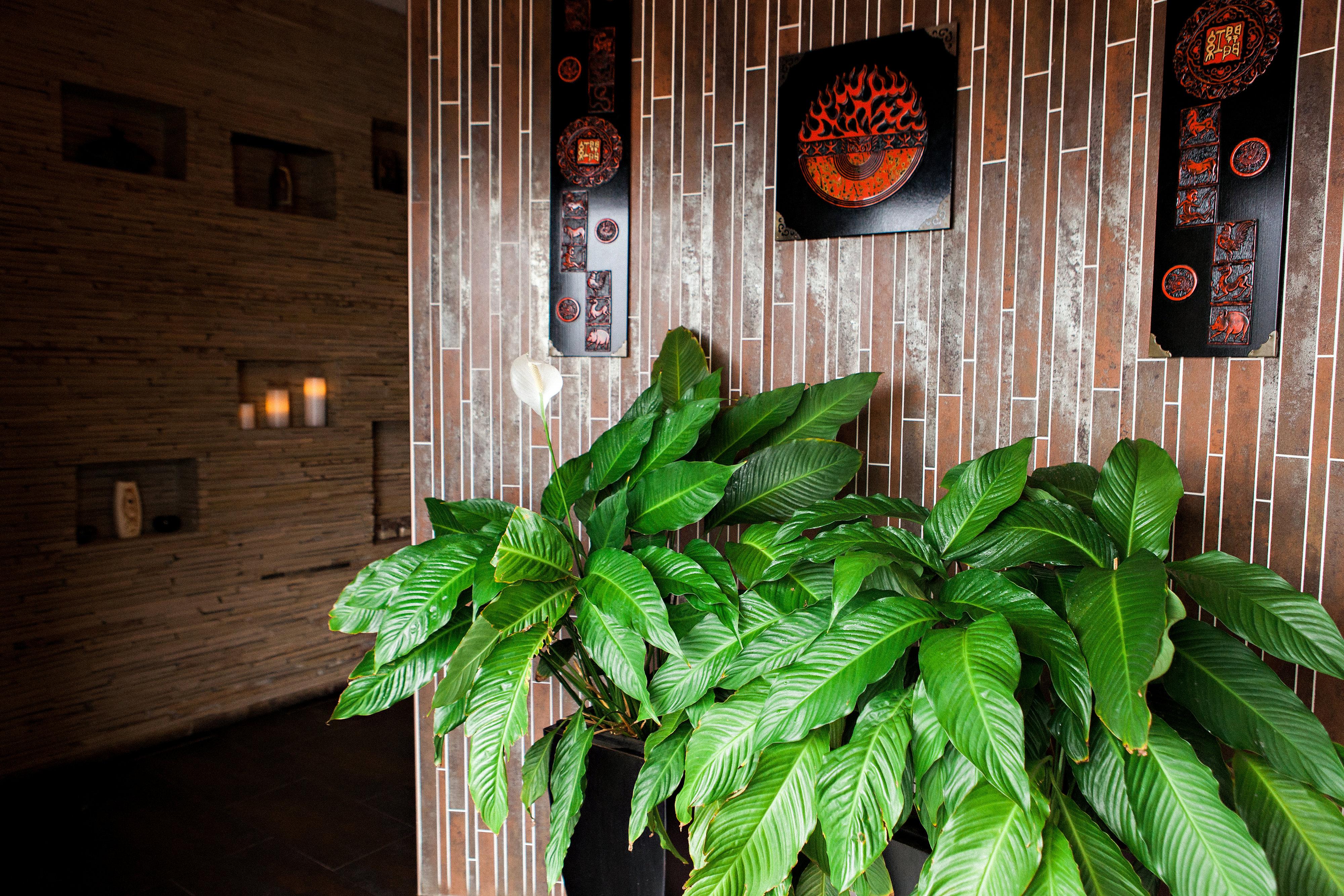 Beautiful Decor at Treat Your Feet Doraville - OTP Atlanta Massage Spa